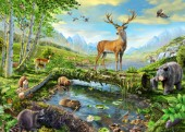 Wildlife Splendor US