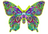 Paisley Butterfly (Variant 2)