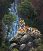 Tiger waterfall
