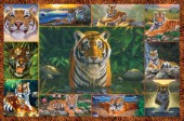 Tiger multipic landscape