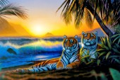 Tropical tigers