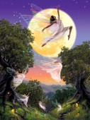 Dance of the moon fairy