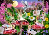 Enchanting Fairy Story