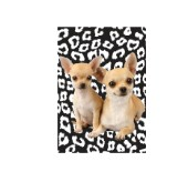 Chihuahuas with animal print