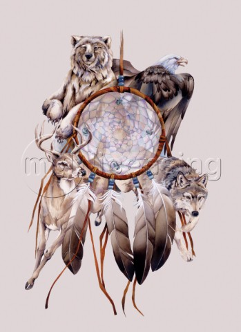 Dream catcher 473