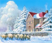 Winter passage - sheep