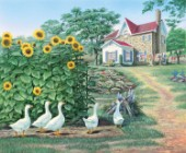 Garden path - geese and sunflowers
