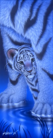 Shy white tiger II