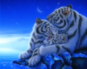 Treasure - White Tiger