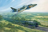 Tangmere hunter
