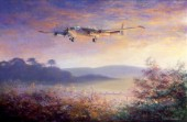 Cornish Dawn Shakleton3, RAF St.Mawgan
