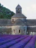 Lavander Church PR733 (Variant 1).jpg