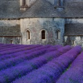 Lavander Church PR733.jpg