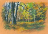 Autumn Chestnut Trees