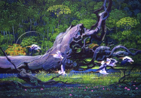 Pelicans in the forest