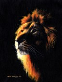 Lion Twilight 2