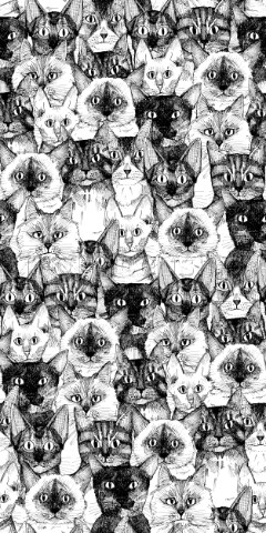 repeating pattern  ink drawn cats