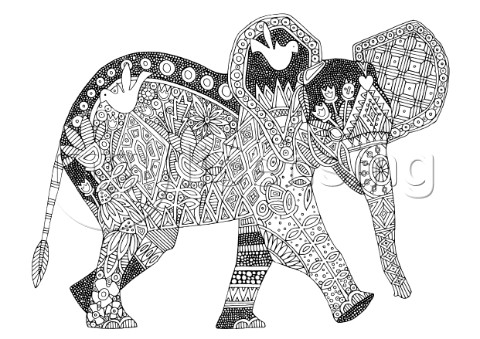 ILLUSTRATED LITTLE ELEPHANT black and white