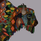 illustrated nature bison
