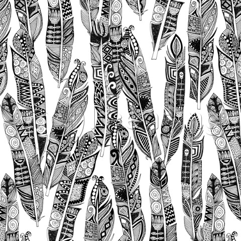 illustrated feather graphic  also available as a repeating pattern
