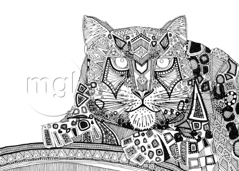 illustrated snow leopard ink drawing