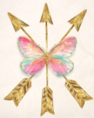 Butterfly Arrows
