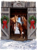 horses in barn door