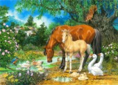Foal and Mare by the Stream