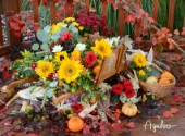 Harvest Time Flowers.jpg