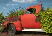 Sanguna and Flowers-Red Truck.jpg