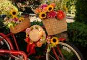 2411-Autumn Bouquet on Red Bicycle