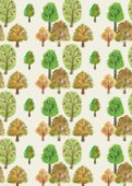 PAINTED NATURE TREES MULTI WATERCOLOUR AUTUMNAL PRINT.jpg